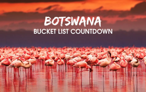 Top 10 Bucket List Countdown 10 & 9_blog image