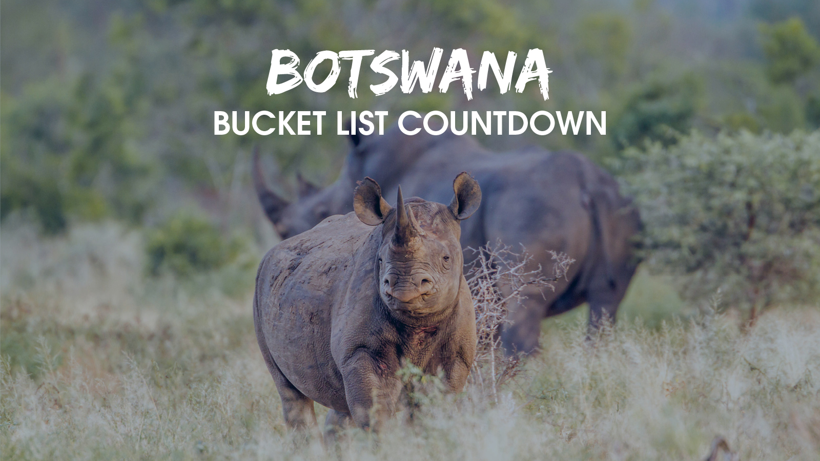 Top 10 Bucket List Countdown 6 & 5_blog image