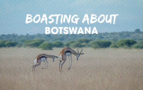 Botswana Fun Facts_blog image