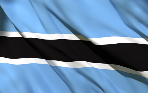 Leading Botswana to Power_blog image